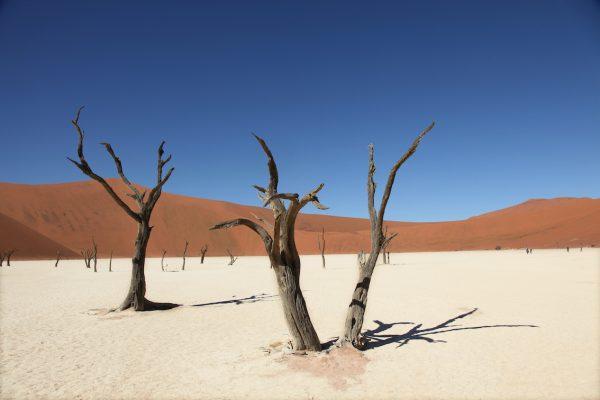 Sossusvlei Namibie