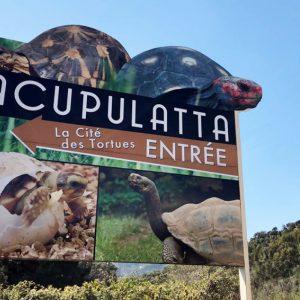 Deux billets d'entrée à A Cupulatta
