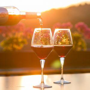 Présentation et dégustation de vins à Saint-Tropez