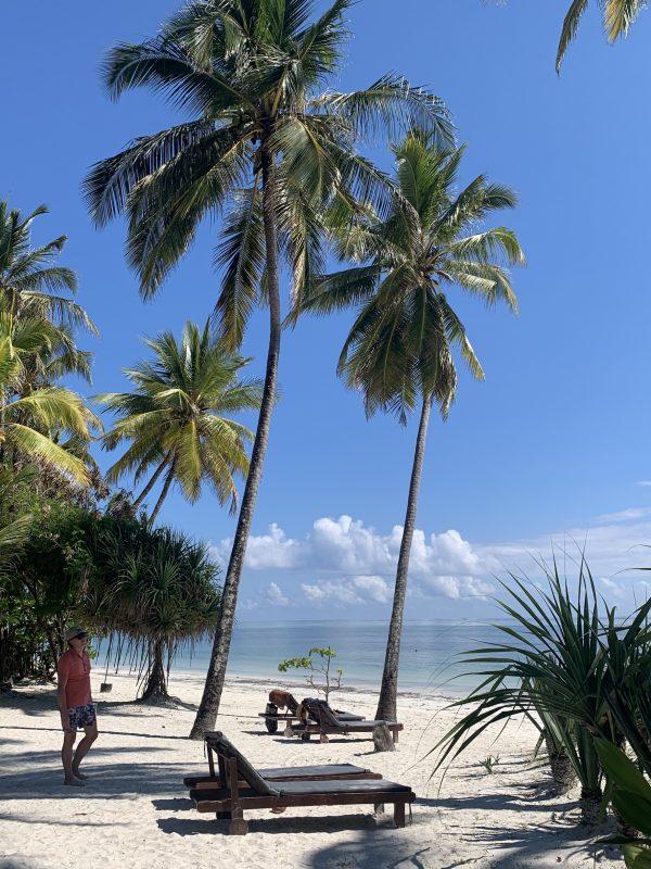 hotel indigo beach zanzibar