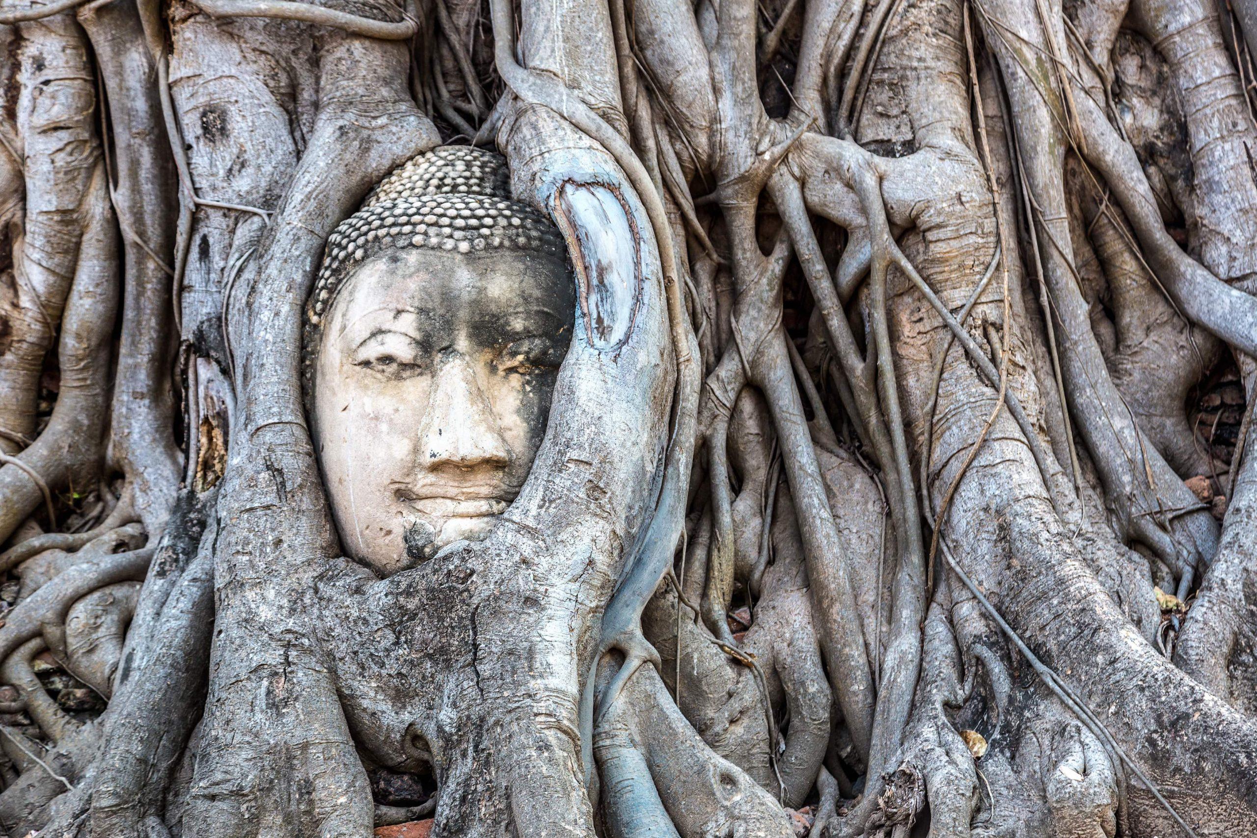 boudha thaïlande