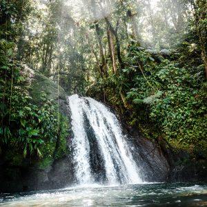 Visite de la réserve naturelle de Colo-I-Suva