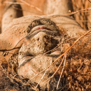 Piscine de boue aux sources chaudes