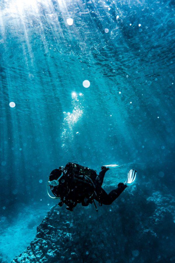 Découverte de la plongée