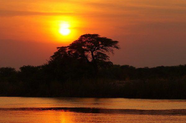 Une participation pour une excursion en bateau de la faune du Delta de l'Okavango
