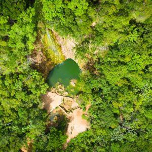 mangrove république dominicaine