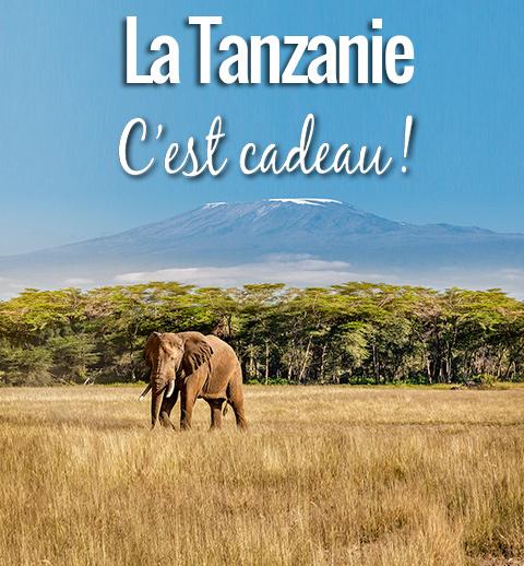 TANZANIE-MOB-0