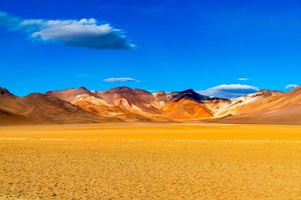 désert salvador dali
