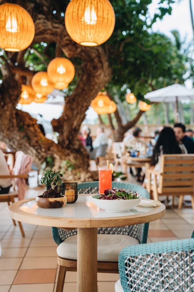 hau tree restaurant
